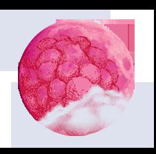 Pleine lune des framboises